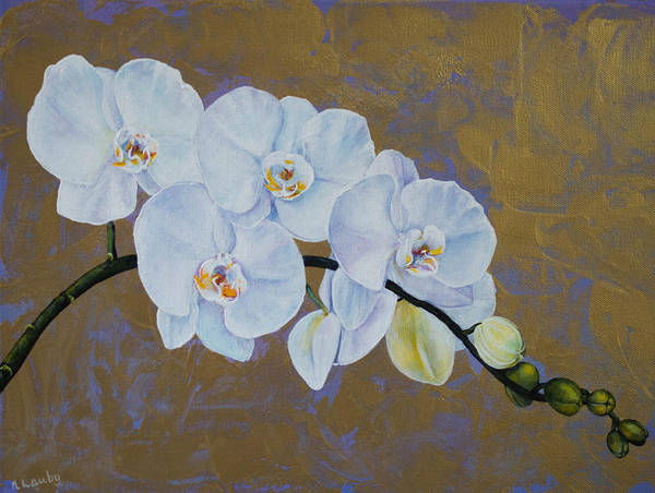 Painting - White Orchids  by Nancy Lauby