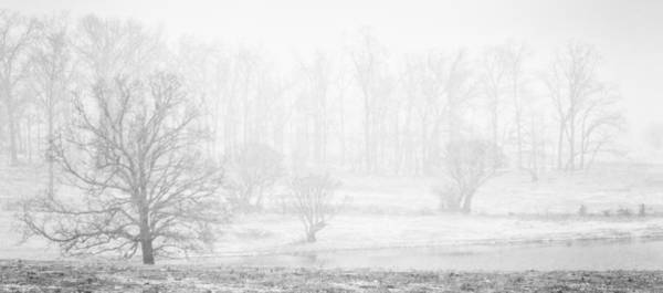 Photograph - White Out II by David Waldrop