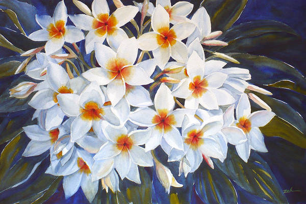 Painting - White Plumeria by Janet Zeh