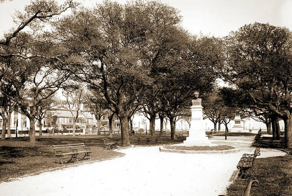 Wall Art - Drawing - White Point Garden, Charleston by Litz Collection