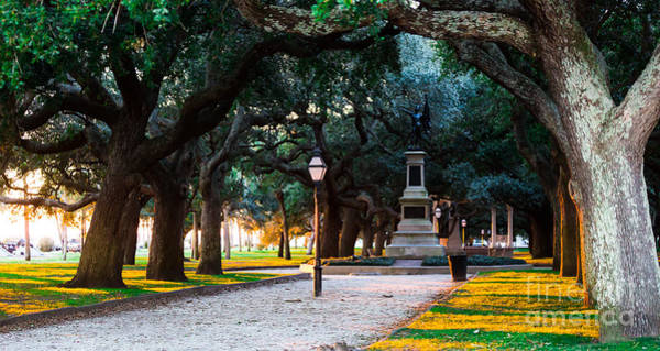 Low Battery Photograph - White Point Garden Walkway Charleston Sc by Donnie Whitaker