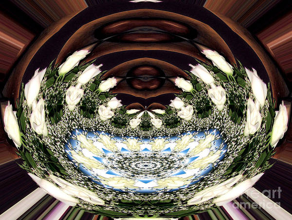 Photograph - White Roses And Babys Breath Polar Coordinates Effect by Rose Santuci-Sofranko
