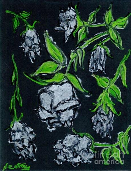 Drawing - White Roses Dieing by Neil Stuart Coffey