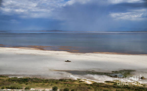 Photograph - White Sand Beach Of Antelope Island by Donna Greene