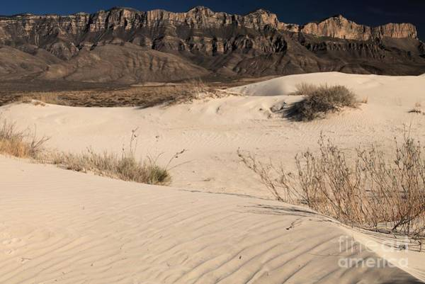 Photograph - White Sand Below by Adam Jewell