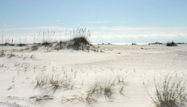 Photograph - White Sands by Anthony Wilkening