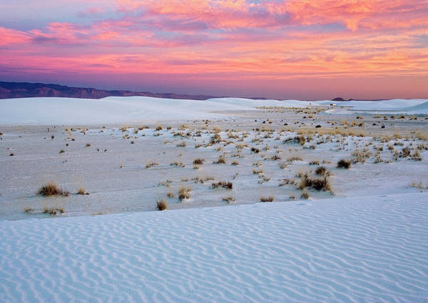 White Sands National Monument Art Print by Bob Gibbons/science Photo Library