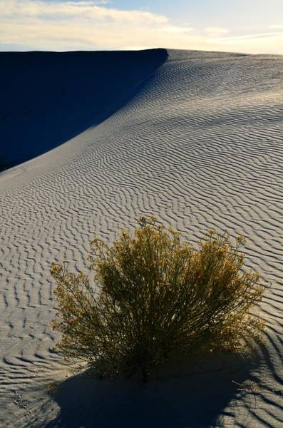 Photograph - White Sands National Monument by Walt Sterneman