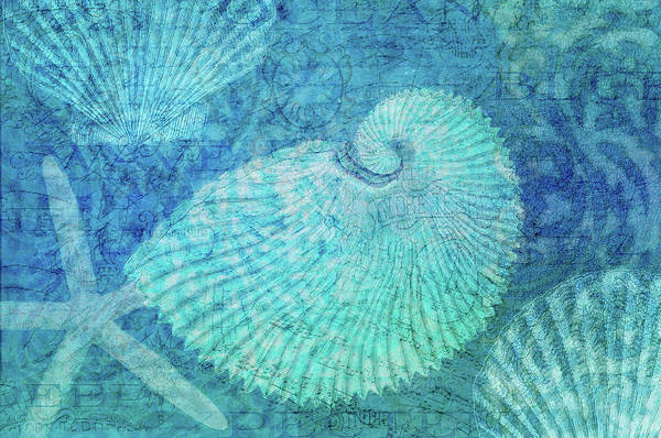 Beach Collage Painting - White Scallop by Cora Niele
