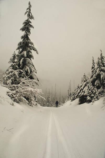 Photograph - White Silence by Yulia Kazansky