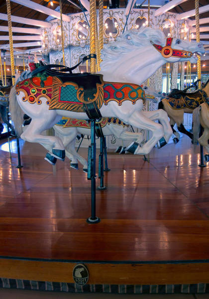 Carnies Photograph - White Stallion Of Looff Carousel  1909 by Daniel Hagerman
