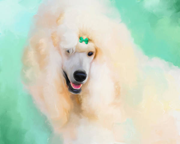 Painting - White Standard Poodle by Jai Johnson