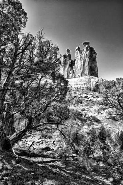 Wall Art - Photograph - White Stone by Juan Carlos Diaz Parra