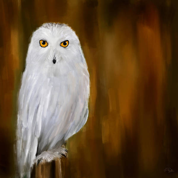 Barn Owl Painting - White Stranger by Lourry Legarde