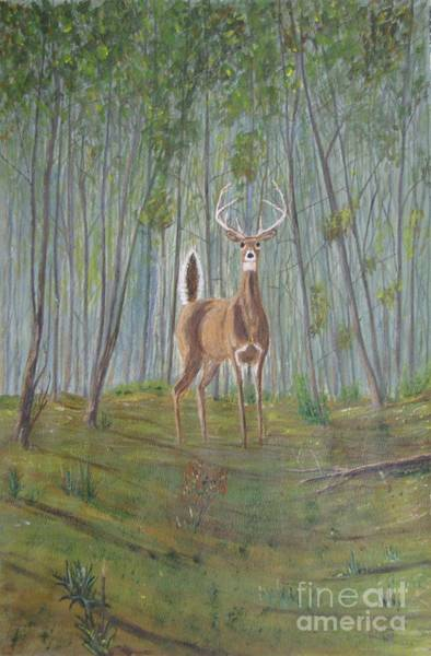 White-tailed Deer - Impressionistic Art Print by Dana Carroll