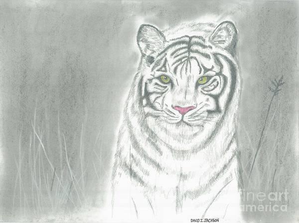 Wall Art - Pastel - White Tiger by David Jackson