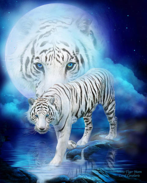 White Cat Mixed Media - White Tiger Moon by Carol Cavalaris