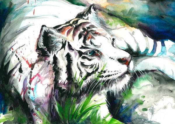 Acuarela Painting - White Tiger Watercolor Art Print by Tiberiu Soos