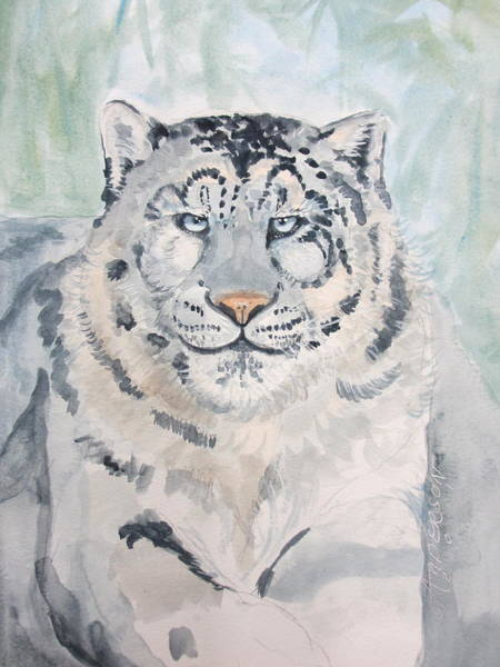 Painting - White Tiger by Sherri Anderson