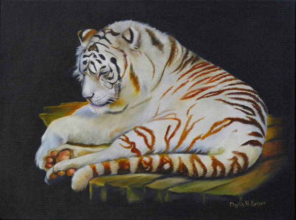 Wall Art - Painting - White Tiger Sleeping by Phyllis Beiser