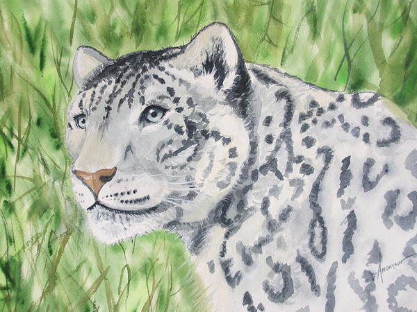 Painting - White Tiger Too by Sherri Anderson