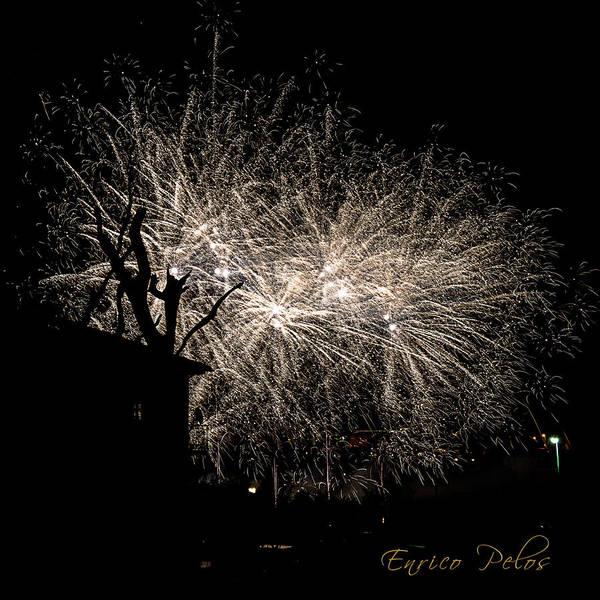 Photograph - White Trees by Enrico Pelos