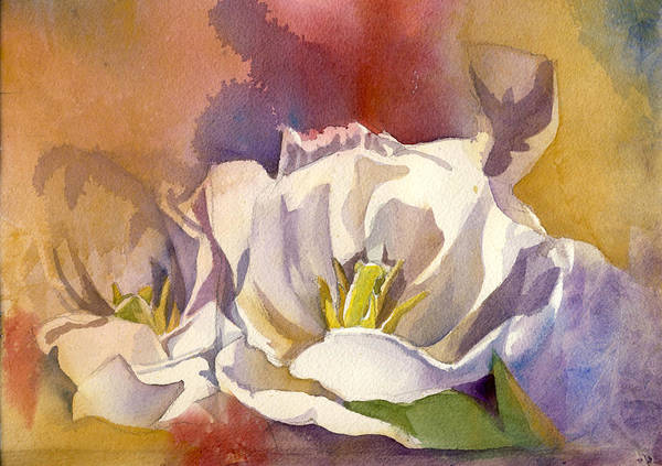 Painting - White Tulip With Red  by Alfred Ng