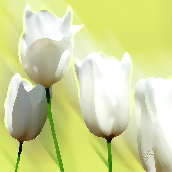 Chartreuse Photograph - White Tulips by Ben and Raisa Gertsberg