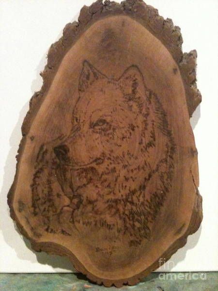 Pyrography - White Wolf by Denise Tomasura