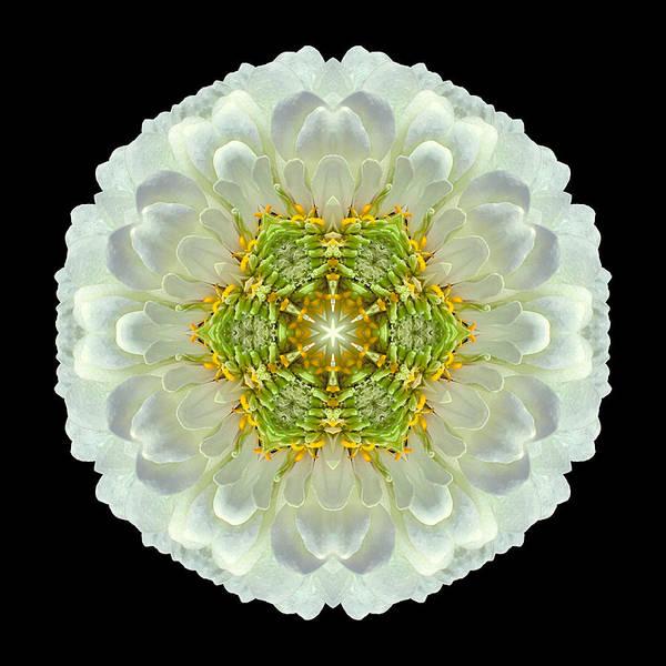 Photograph - White Zinnia Elegans V Flower Mandala by David J Bookbinder
