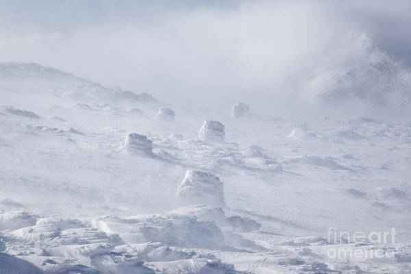 Photograph - Whiteout - Mt Washington New Hampshire by Erin Paul Donovan