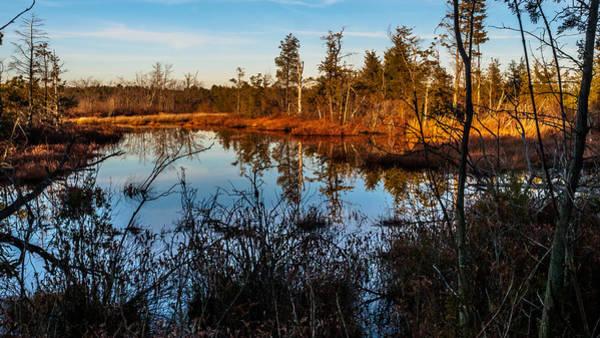 Photograph - Whitesbog In The Fall by Louis Dallara