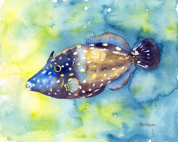 Painting - Whitespot Filefish by Pauline Walsh Jacobson