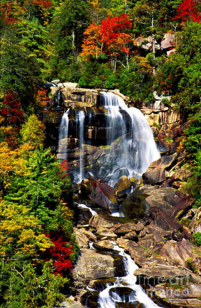 Photograph - Whitewater Falls In Fall by Paul W Faust -  Impressions of Light