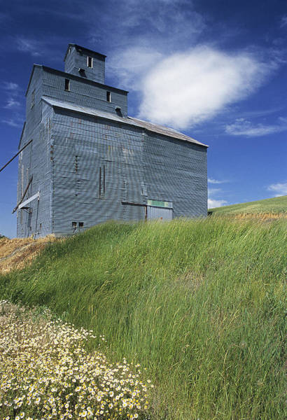 Wall Art - Photograph - Whitman Co Elevator by Latah Trail Foundation