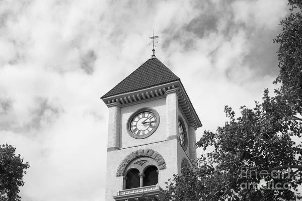 Photograph - Whitman College Memorial Tower by University Icons
