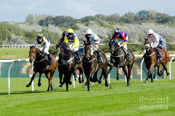 Jocky Photograph - Who Wins by Colin Todd