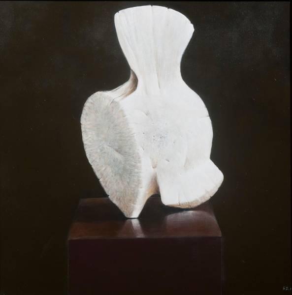 Vertebrae Photograph - Whole Vertebra, 2012 Acrylic On Canvas by Lincoln Seligman