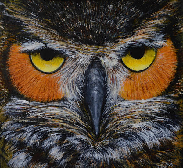 Painting - Whooo Is Looking At You? by Nancy Lauby