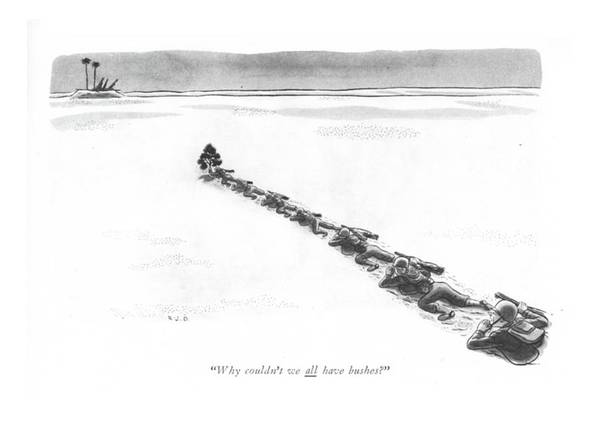 Shipwreck Drawing - Why Couldn't We All Have Bushes? by Robert J. Day