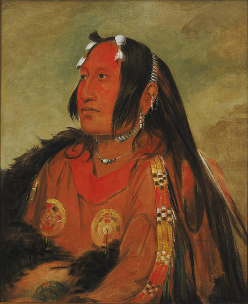 Wi Painting - Wi-jun-jon. Pigeons Egg Head. A Distinguished Young Warrior by George Catlin
