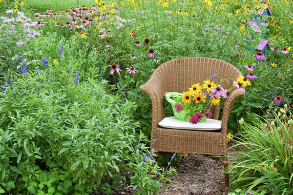 Wicker Chair Photograph - Wicker Chair With Basket And Birdhouse by Panoramic Images