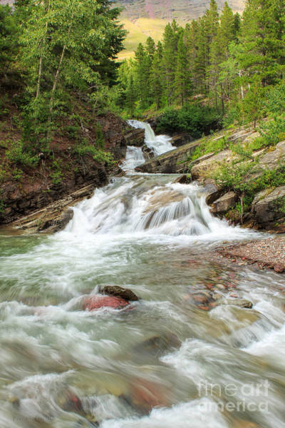 Photograph - Wilbur Creek by Beve Brown-Clark Photography