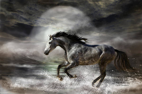 Andalusian Wall Art - Photograph - Wild As The Sea by Carol Cavalaris