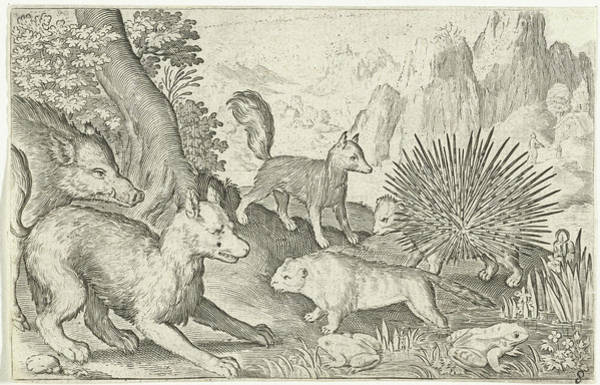 Hoof Drawing - Wild Boar, Fox, Beaver, Porcupine And Frogs by Nicolaes De Bruyn