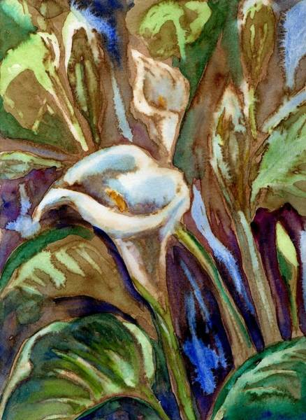 Calla Mixed Media - Wild Calla Lilies by Diana Cardosi-Bussone
