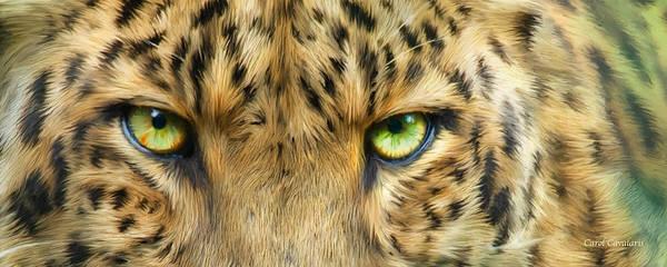 Wall Art - Mixed Media - Wild Eyes - Leopard by Carol Cavalaris