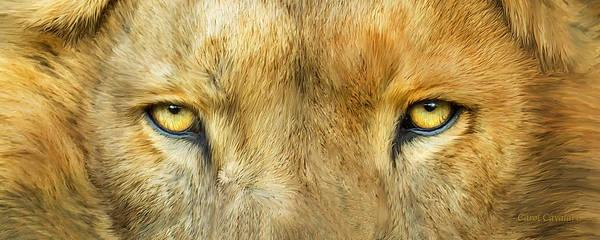 Mixed Media - Wild Eyes - Lion by Carol Cavalaris