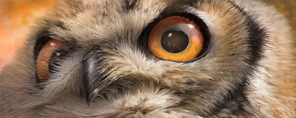 Mixed Media - Wild Eyes - Owl by Carol Cavalaris