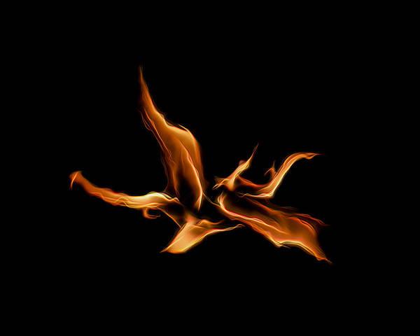 Wild Fire Art Print